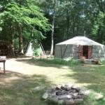 Yurt in het bos