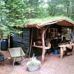 Tuinhuisje met sedum dak